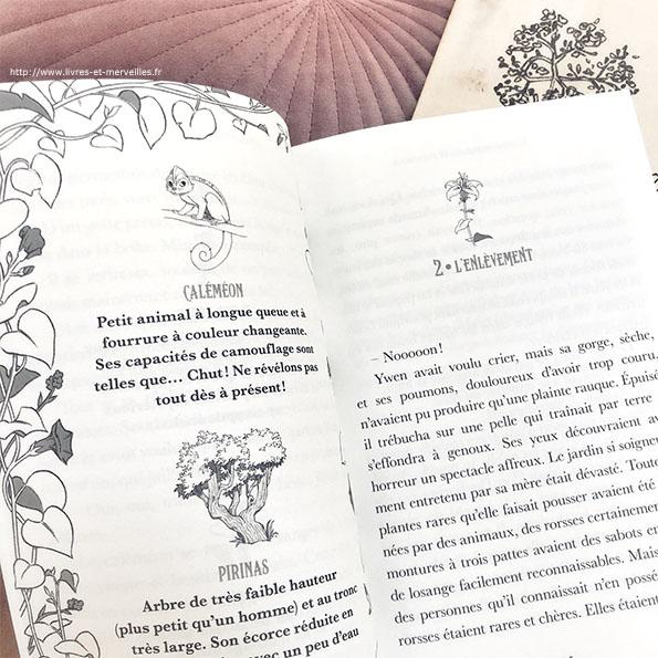 L'Herboriste de Hoteforais : Un roman jeunesse fantasy pour les 8/9 ans