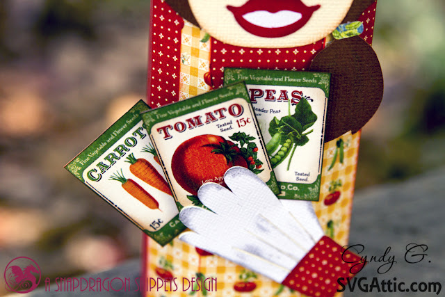 Close up of garden seed packets