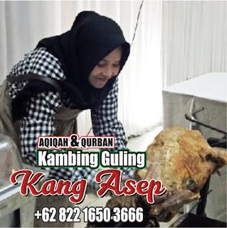 Jual Kambing Guling Muda Bandung,Jual Kambing Guling Bandung,kambing guling muda bandung,kambing guling bandung,kambing guling,jual kambing guling bandung,