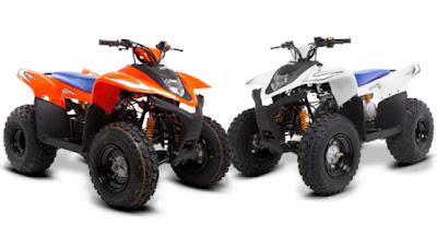 SMC Hornet 100cc Quad Bike