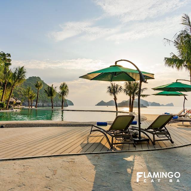 charm pool flamingo cát bà