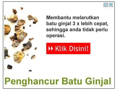 http://www.apotiknew.com/2016/04/obat-herbal-penghancur-batu-ginjal.html