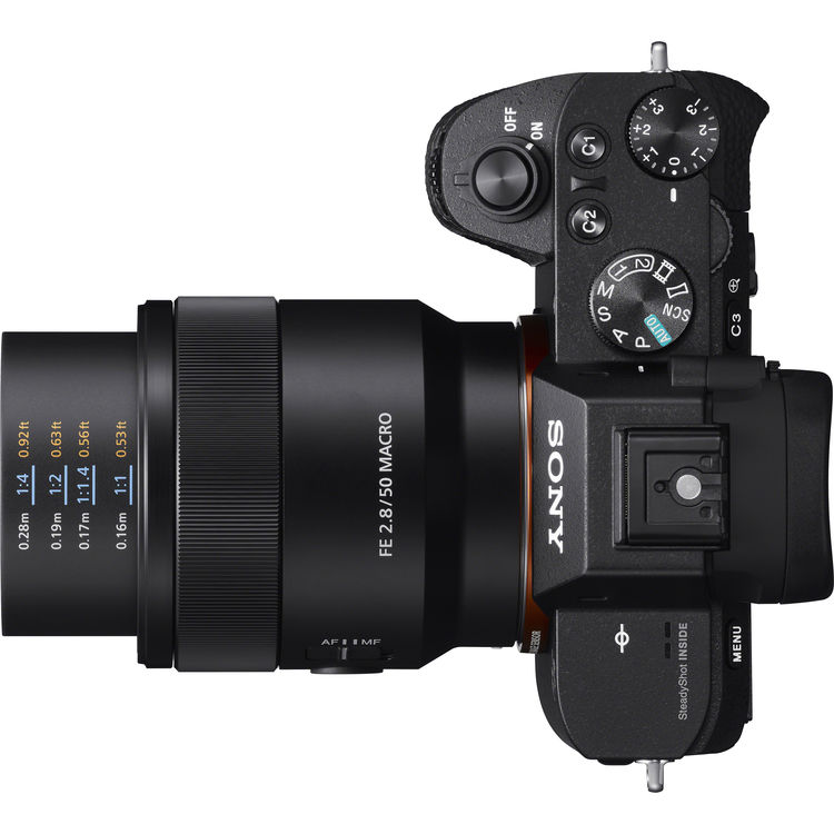 Sony FE 50mm f/2.8 Macro на камере Sony A7 II