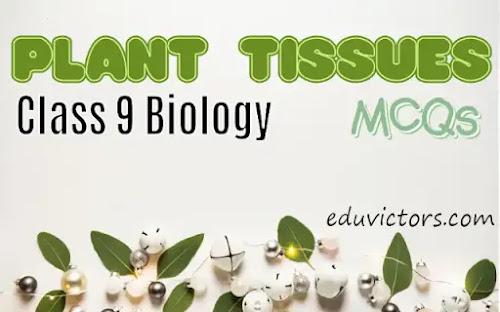 CBSE Class 9 - Biology - Plant Tissues (MCQs) (#eduvictors)(#class9biology)(#plantTissues)