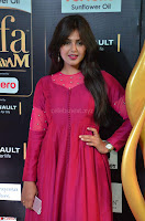 Monal Gajjar in Maroon Gown Stunning Cute Beauty at IIFA Utsavam Awards 2017 013.JPG