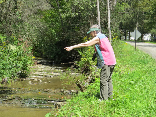 woman pointing at a stream