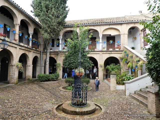 patios y flores en Córdoba