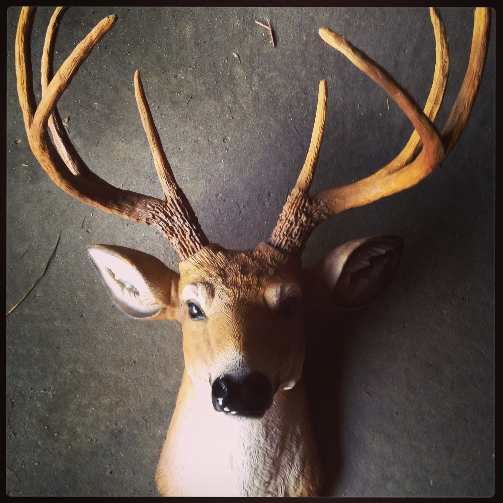 Klaus Lebrecht, the owner of Classic Antlers, is a master at the Art of reproductions. This is just a tiny sample of some of the bucks reproduced by Klaus and his son over the years.