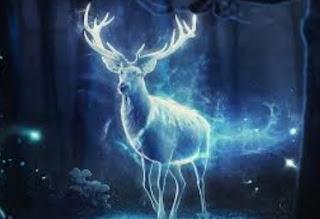 Duchowi posłańcy -zwierzęta mocy