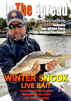 winter fishing snook bait in the spread william toney
