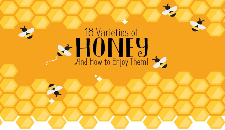 18 Varieties of Honey and How to Enjoy Them! #Infographic
