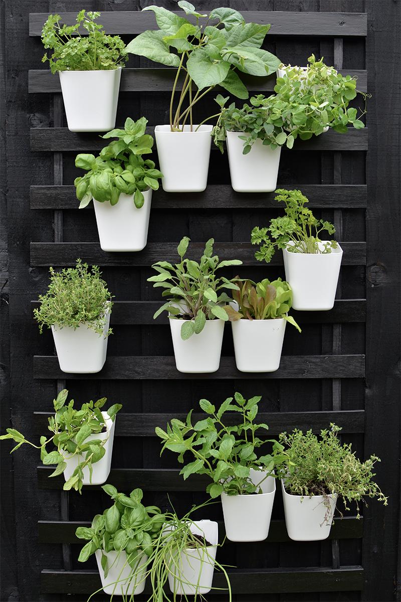 modern vertical garden IKEA hack  BURKATRON