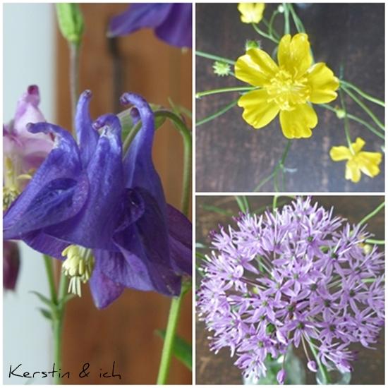 Nahaufnahmen Akelei, Butterblume, Allium