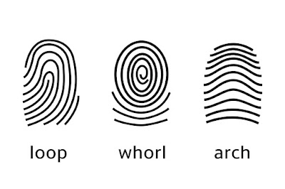 có thật sự xem vân tay nói lên tính cách con người