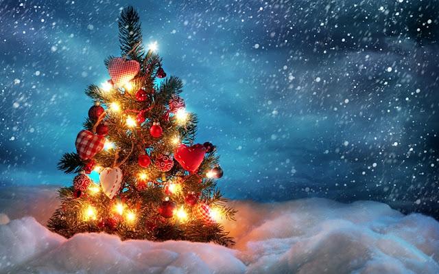 Hd Images of Christmas Tree
