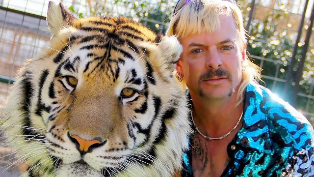 Análise Crítica – A Máfia dos Tigres