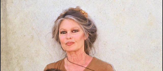Brigitte Bardot Refused Chemotherapy To Treat Her Cancer