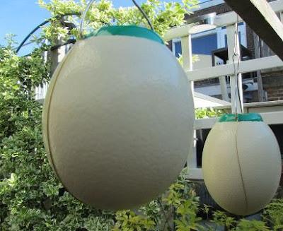cara membuat lampu cangkang telur