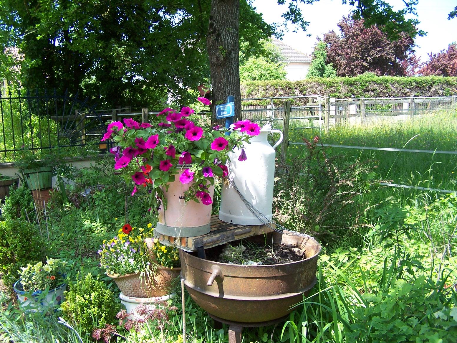 Fleurs pour jardini re plein soleil - Fleurs pour jardiniere plein soleil ...