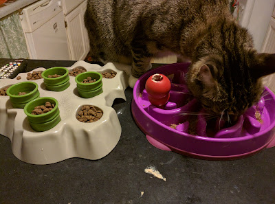 time-consuming puzzle bowls for cats