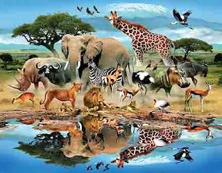 hewan atau binatang dalam bahasa Arab