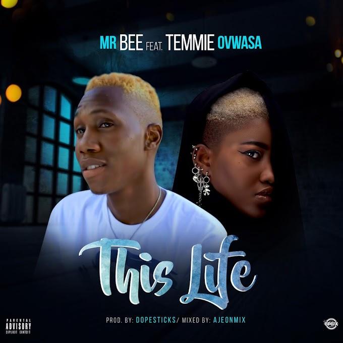 [Music] : MrBEE ft Demmie Ovwasa - This Life