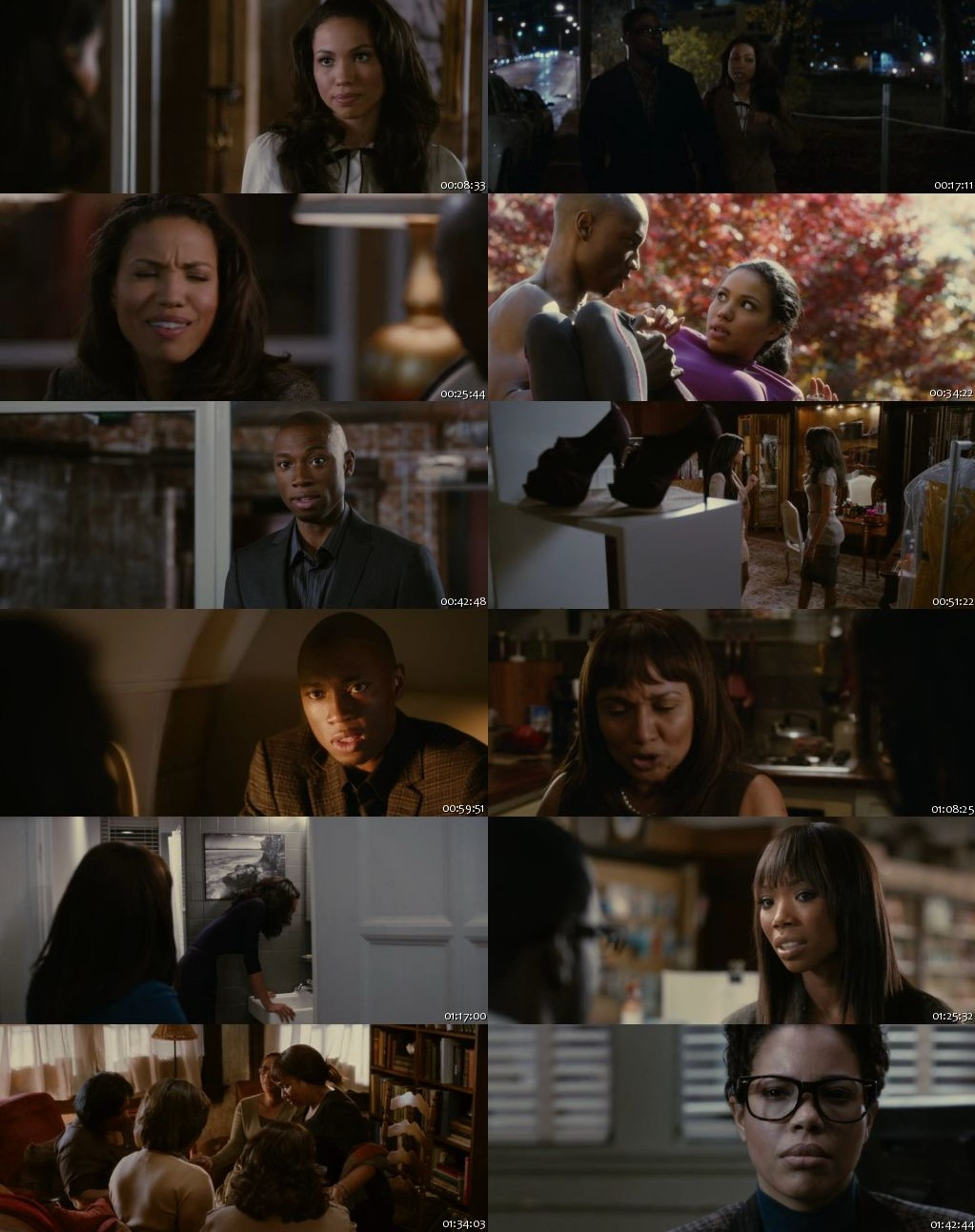 Temptation: Confessions of a Marriage Counselor 2013 BRRip 480p 300Mb [Hindi-English]