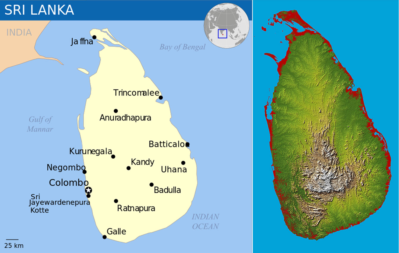 Book Review Erflies Of Sri Lanka