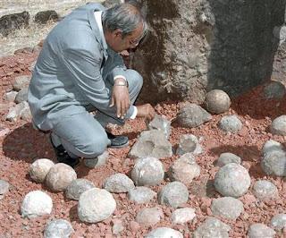 nesting site found in india