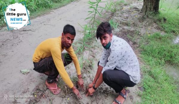 एनसीसी कैडेट ने किया वृक्षारोपण, हर साल अपने जन्मदिन पर लगाते हैं पौधे
