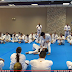 International Kyokushin Kan Seminars - Part 3