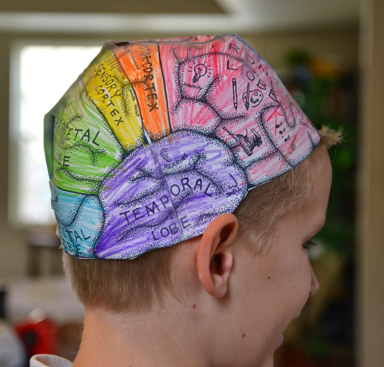 lobes of the brain worksheet