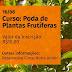 Curso de Poda de Plantas Frutíferas de Clima Temperado será ministrado na próxima semana