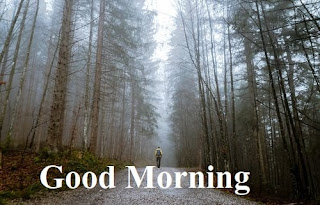 good morning with beautiful nature