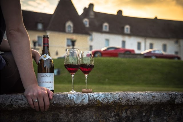 Easy Beginner's Guide to Understanding French Wine