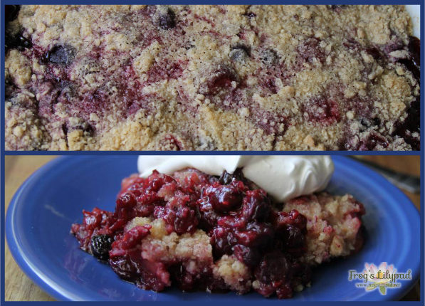 Mixed Berry Crumble is made with everything yummy! Don't have mixed berries? Use any fruit you have on hand - peaches and blueberries are perfect together. (Frog's Lilypad) frogslilypad.net