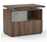 stec file and storage cabinet