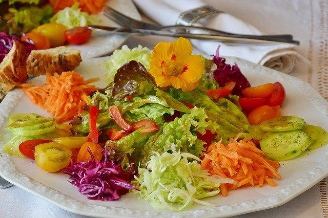 Jenis Diet Sehat