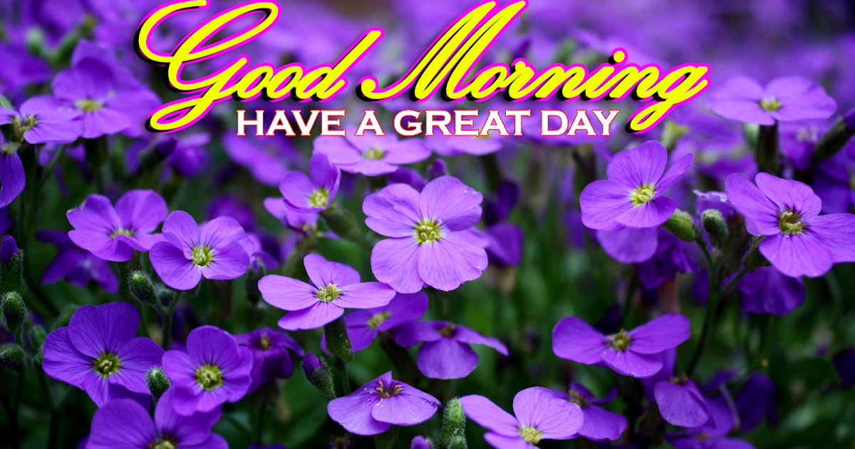 Greetings.Live*Free Daily Greetings Pictures Festival GIF ...