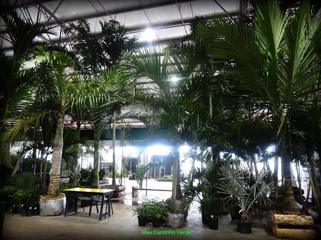 Mercado de plantas da região de Holambra
