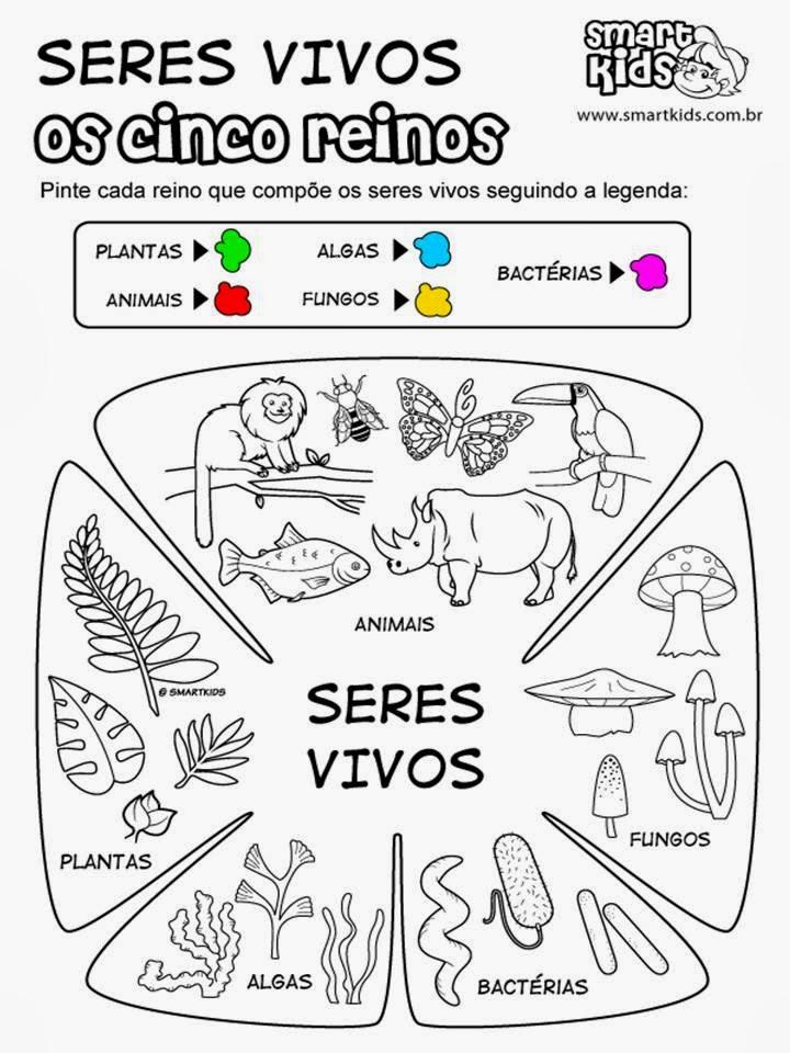 Genetica e evolução resumo