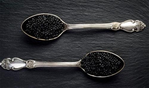 CAVIAR : Ini adalah makanan yang termasuk paling mahal di dunia : CAVIAR  yang sebenarnya adalah telur ikan. Foto dari ZARZAMORA/SHUTTERSTOCK