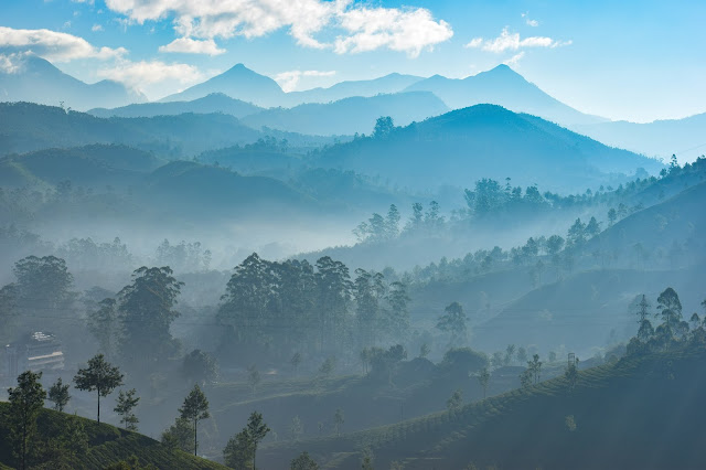 Top Five Reasons to Visit Kerala India