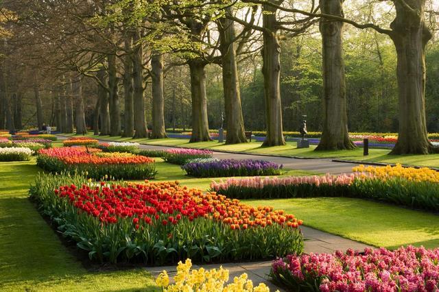 Keukenhof Gardens, Paises Bajos