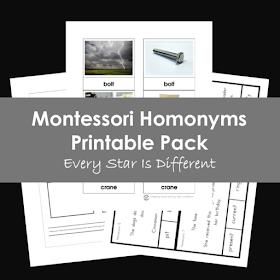 Montessori Homonyms Printable Pack