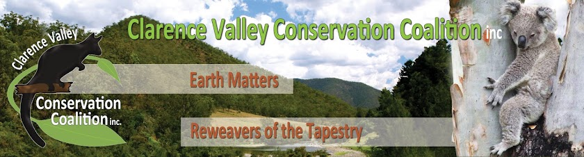 Clarence Valley Conservation Coalition