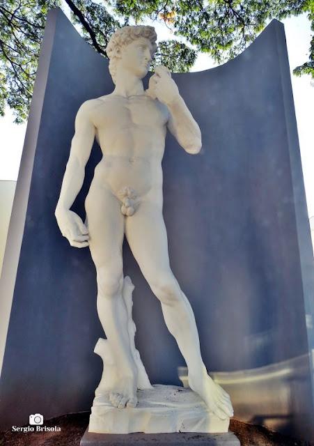 Close-up da Réplica Davi de Michelangelo - Liceu de Artes e Ofícios de São Paulo - Luz