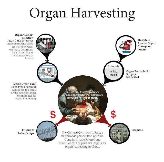 A extração forçada de órgãos é vista pelo governo socialista como um método para fazer desaparecer opositores e obter imorais lucros