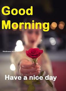 romantic good morning rose image to love