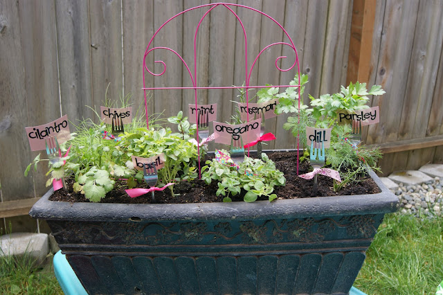 Herb garden idea @michellepaigeblogs.com